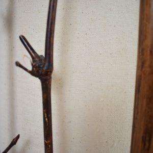 Bamboo floor light set